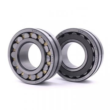 SKF 23160 CAC / W33 SWEDEN Bearing 300*500*160
